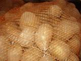 Ziemniaki jadalne - pomorskie 0,30 gr
