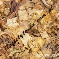Liście tytoniu BURLEY VIRGINIA ORIENTAL - IMPORT