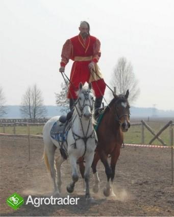 Ukraina.Gospodarstwo rolne, 800ha z zabudowaniami