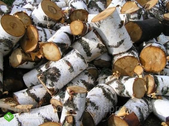 Ukraina.Pellety,brykiety drzewne,slonecznik,torf. - zdjęcie 4