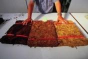 Hiszpańskie plantacje liść tytoniu