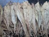 Liście tytoniu BURLEY VIRGINIA Kujawsko- Pomorskie