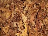 Liście tytoniu,strips,blend tytoniowy