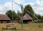 Ukraina.Sady orzechowe,plantacje roslin jagodowych