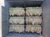 liscie tytoniu