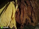 Liscie Tytoniu Virginia Burley 1 Gatunek 15zł/ kilo