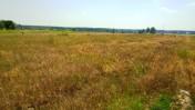 Oddam pole w darmową dzierżawę
