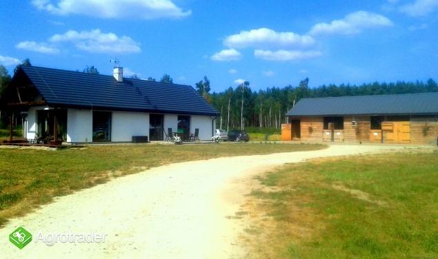 Siedlisko- dom ze stajnią na 11 ha działce Super CENA - zdjęcie 5