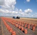 Ukraina.Gospodarstwo rolne zamienie duze ilosci ziemniakow na maszyny,