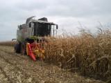 Przystawka do kukurydzy na ziarno EMH 8 składana NOWA Emmarol