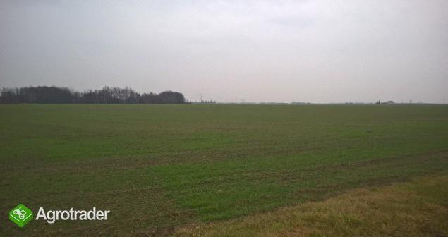 sprzedaż gruntów rolnych