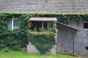 Dom , budynki gospodarcze w pow zielonogórskiem sprzedam