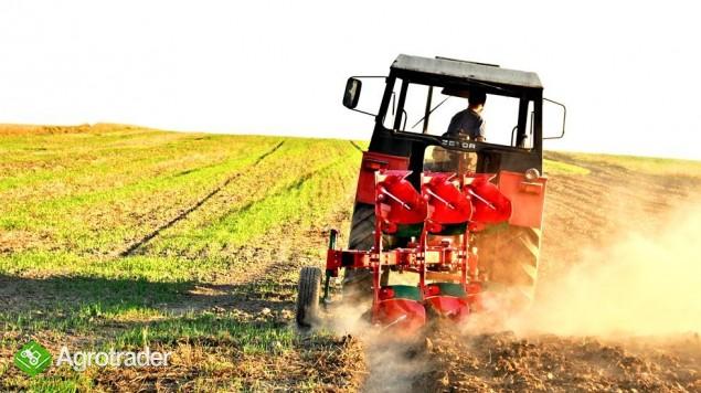 Pług pługi obrotowy obracalny mały Agro-Masz zabezpieczenie zrywalne - zdjęcie 2