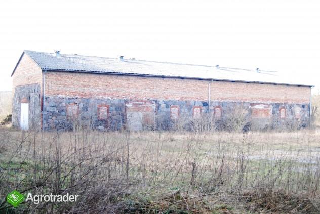 Grunt rolny na sprzedaż 140 ha Chłopowo Myślibórz - zdjęcie 4