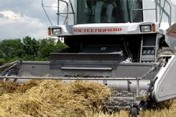 Ukraina. Wprowadzanie na rynek krajowy producentow, dystrybutorow