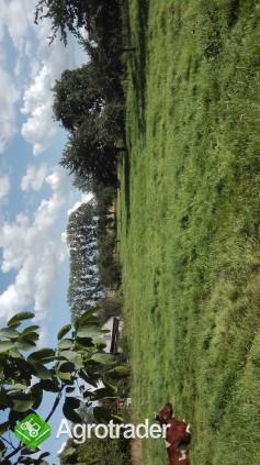 Gospodarstwo rolne - zdjęcie 2