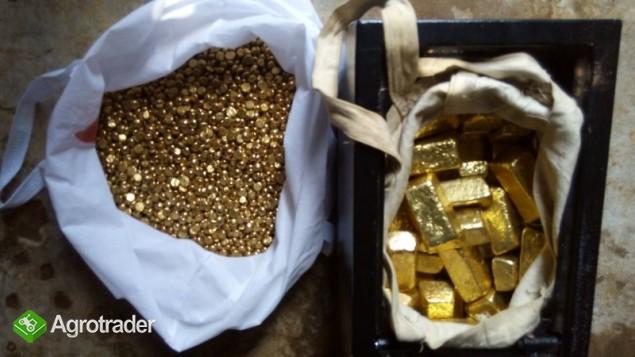Dostępne są sztabki złota, bryłki złota, złoty pył i diamenty