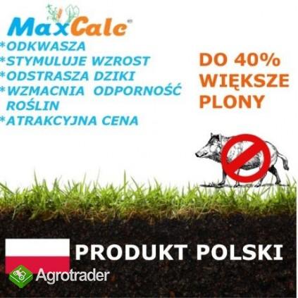 Wapno Max CALC, nawóz wapniowo organiczny II generacji plus organika