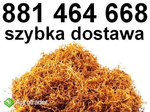 Świetnej jakości tytoń papierosowy! Tani tytoń Premium