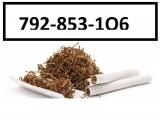 Tani tyton Ondraszek, Korsarz, PS, Marlboro, tytoń jasny i ciemny,