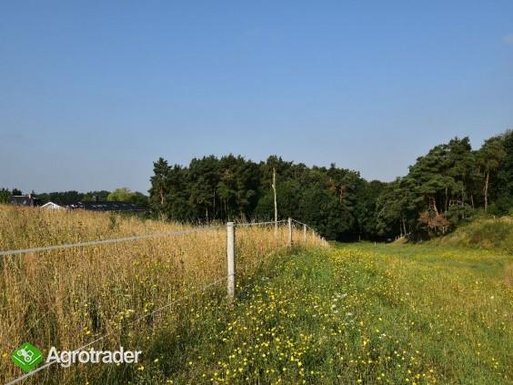 Na Sprzedaż Gospodarstwo Rolne , 507 799 m2 , Szczecin - Czepino  - zdjęcie 5