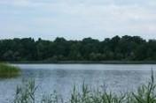 Sprzedam działkę nad jeziorem Woświn