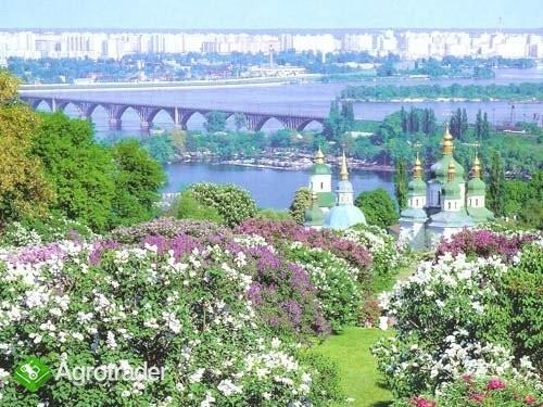 Ukraina.Dzialki budowlane i pod inwestycjeSprzedaz - zdjęcie 3