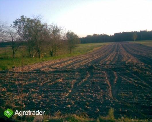 gospodarstwo rolne i budynki - zdjęcie 3