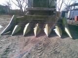 CLAAS Przystawka do zbioru kukurydzy na ziarno