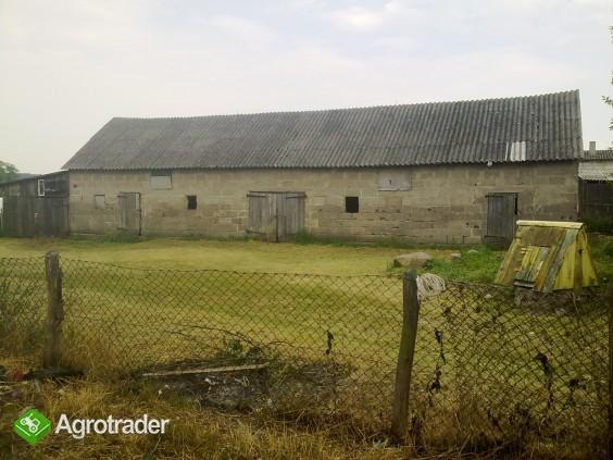 Siedlisko, dom na wsi blisko Jeziora Rajgrodzkiego, Podlasie - zdjęcie 2